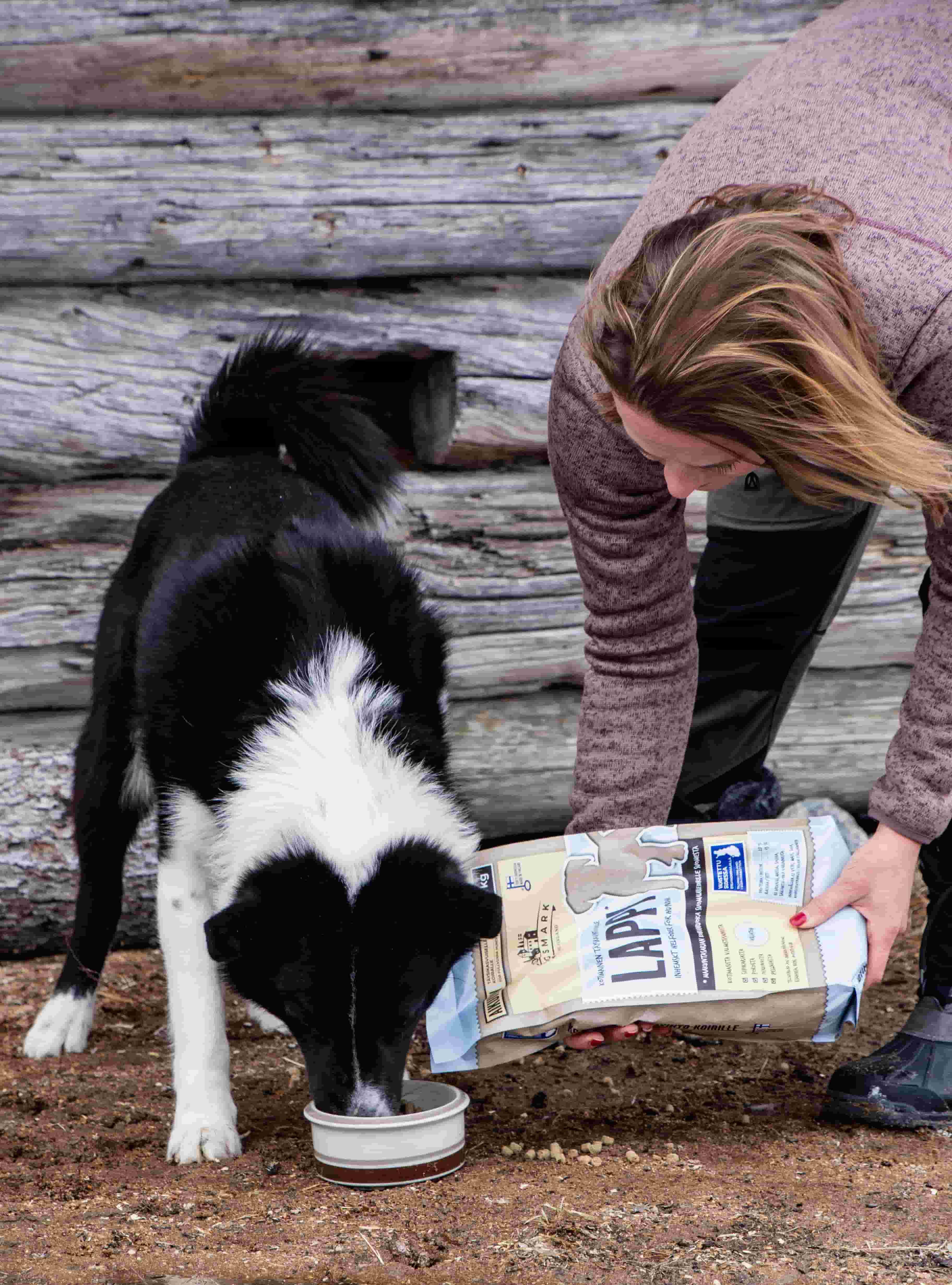 Dagsmark Petfood_lähiruokaa lemmikeille