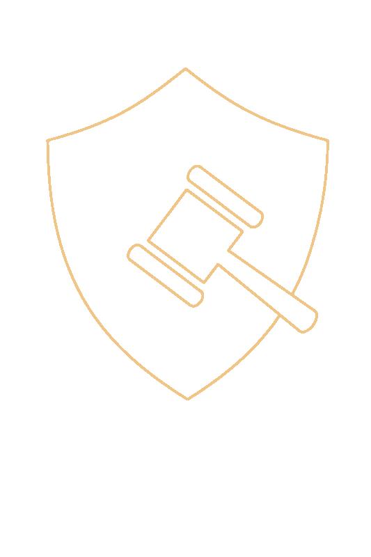 Kolster Market Watch™ and Customs Surveillance